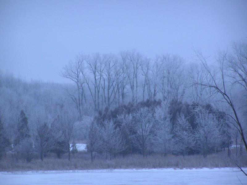 Icefogtwilight2