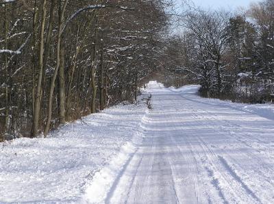 Snowyroad