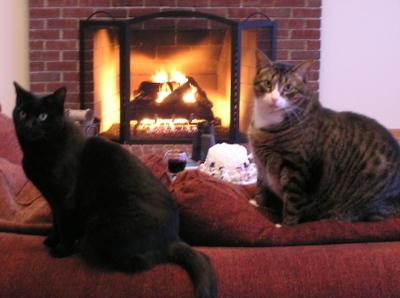 Catscouchfire